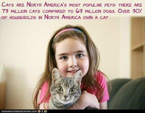 Fun Cat Facts #2