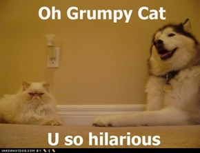 Oh Grumpy Cat U so hilarious