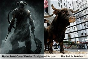 Skyrim Front Cover Warrior Totally Looks Like This Bull in America