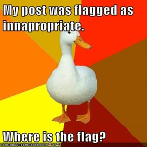 My post was flagged as innapropriate.  Where is the flag?