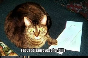 Fat Cat disaproves of ur bills