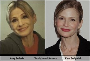 Amy Sedaris Totally Looks Like Kyra Sedgwick
