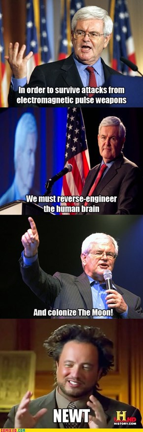 F***ing Gingrich, How Does He Work?