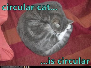 circular cat...  ...is circular