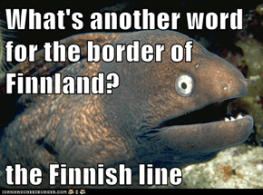 What's another word for the border of Finnland?  the Finnish line