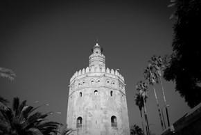 Torre del oro. Seville
