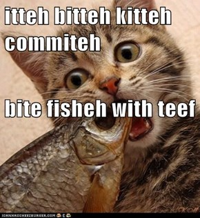 itteh bitteh kitteh commiteh bite fisheh with teef