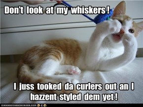 Don't  look  at  my  whiskers !