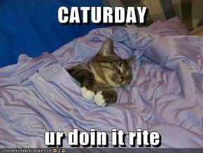 CATURDAY  ur doin it rite
