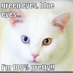 green eyes, blue eyes...  I'm 100% pretty!!