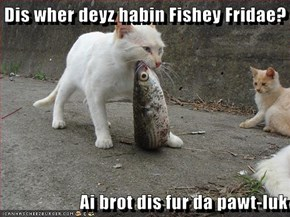 Dis wher deyz habin Fishey Fridae?  Ai brot dis fur da pawt-luk