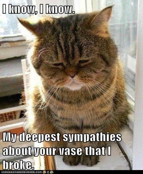 I know, I know.  My deepest sympathies about your vase that I broke.