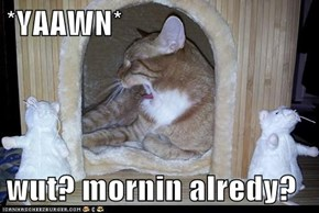 *YAAWN*  wut? mornin alredy?