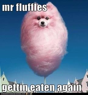 mr fluffles  gettin eaten again