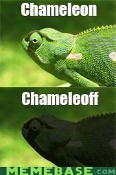 Karma Chameleoff