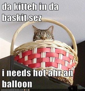 da kitteh in da baskit sez  i needs hot ahr an balloon