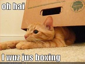 oh hai   I wuz jus boxing