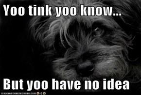 Yoo tink yoo know...  But yoo have no idea