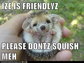 IZE IS FRIENDLYZ  PLEASE DONTZ SQUISH MEH