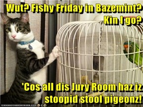 Wut? Fishy Friday in Bazemint? Kin I go?  'Cos all dis Jury Room haz iz stoopid stool pigeonz!