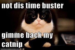 not dis time buster  gimme back my catnip