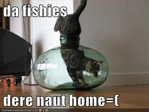 da fishies  dere naut home=(