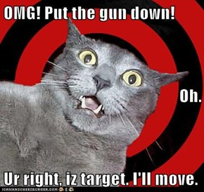 OMG! Put the gun down! Oh. Ur right, iz target. I'll move.