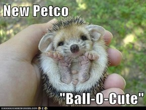 "New Petco  ""Ball-O-Cute"""