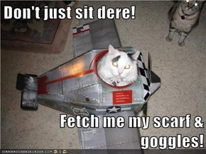 Don't just sit dere!  Fetch me my scarf & goggles!