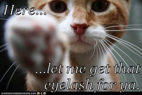Here...  ...let me get that eyelash for ya.