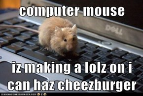 computer mouse   iz making a lolz on i can haz cheezburger