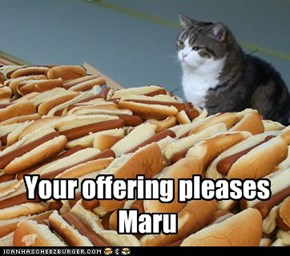 Your offering pleases Maru