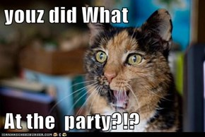 youz did What  At the  party?!?