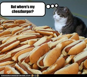 But where's my cheezburger?