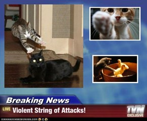 Breaking News - Violent String of Attacks!