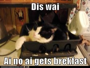 Dis wai  Ai no ai gets brekfast