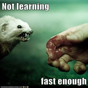 Not learning  fast enough