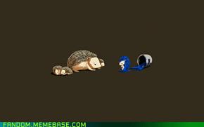 Sonic Begins
