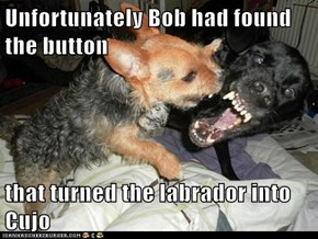 Unfortunately Bob had found the button  that turned the labrador into Cujo