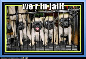 we r in jail!