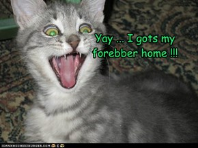 Yay ... I gots my  forebber home !!!