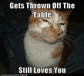 "Cool Cat Craig: More Like ""Gets Thrown Off the Table, Doesn't Jump Up Again"""