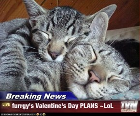 Breaking News - furrgy's Valentine's Day PLANS ~LoL