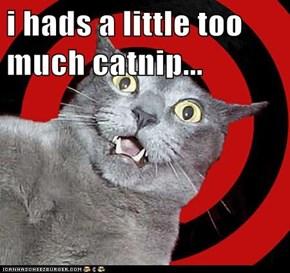 i hads a little too much catnip...