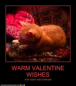 WARM VALENTINE WISHES