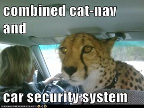 combined cat-nav and  car security system