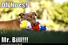 Oh Noes!  Mr. Bill!!!