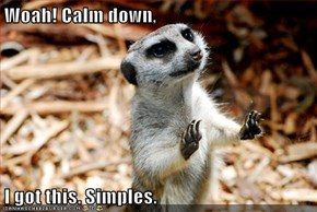 Woah! Calm down,  I got this. Simples.