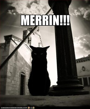 MERRIN!!!