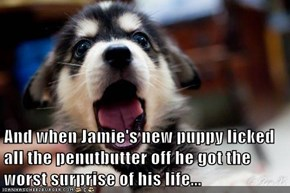And when Jamie's new puppy licked all the penutbutter off he got the worst surprise of his life...